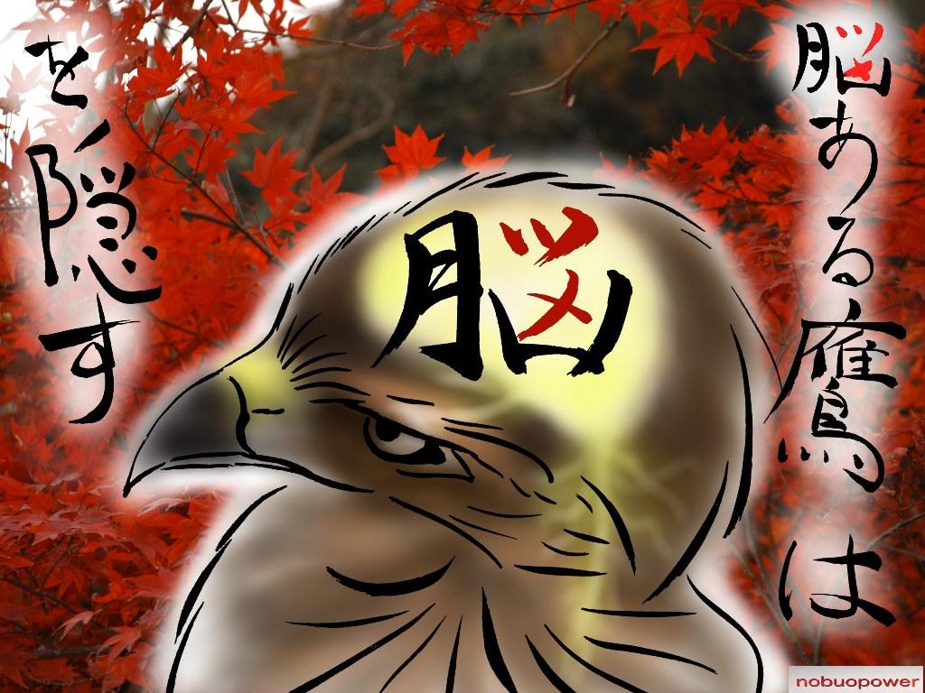能ある鷹は爪を隠すの意味とは?仕事で使える爪の …